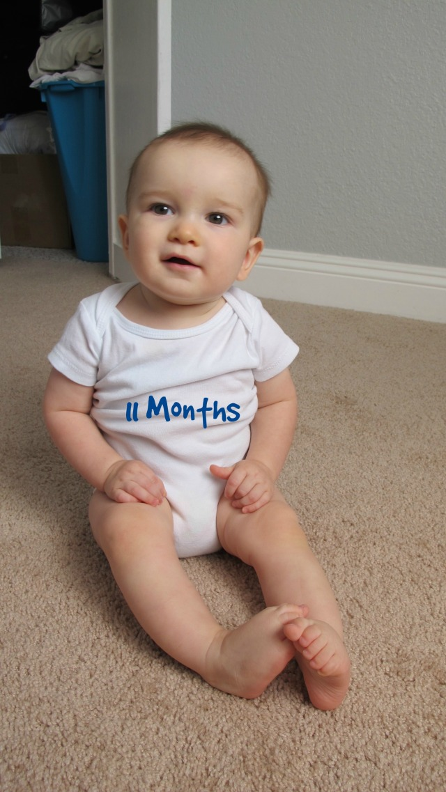 toly 11 months